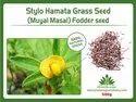 Stylo Hamata Grass (muyalmasal) Fodder Seeds 500gm