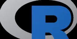 R Language Course
