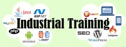 3- 6 Months Custom Industrial Project Training, Location: India