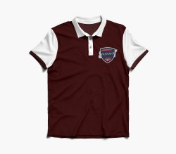 Polo Neck Half Sleeve Men's Cotton Collar T-Shirt, Size: S-XL, Size: Medium