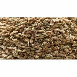 Ajwain Seeds - Bishops Weed