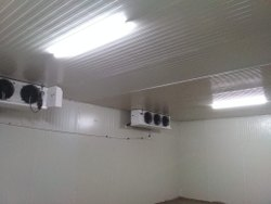 Puf Insulated Cold Storage Room