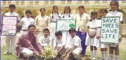 VIII Standard Education Service