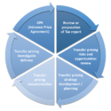 Documentation Advisory Services
