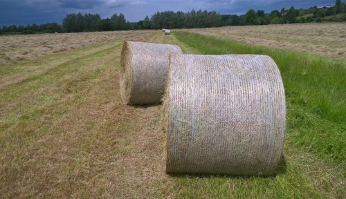 HDPE Bale Net Wrap For Round Baler Mascar, Rs 12500 /unit Anadolu India |  ID: 22158766973