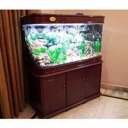 Glass Aquariums - Wholesale Price & Mandi Rate for Glass Aquariums