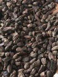 NC Nepal Big Black Cardamom
