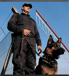 Residential Colonies Security Service