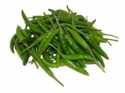 Green Chilli Small-Tikkhi Mirch