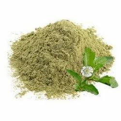 Powder Eclipta Alba Extract, Packaging Size: 25 Kg
