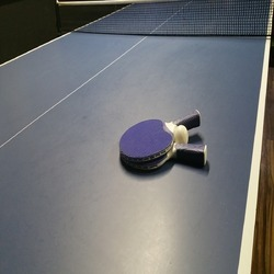 Table Tennis Sports Flooring Service
