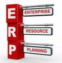 Customised ERP Development Services