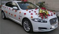 Car Decoration For Wedding Services