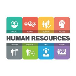 Human Resources Services