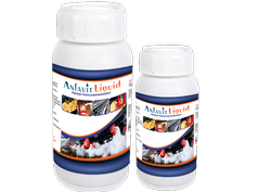 Chicks Immunity Booster Supplement (Anfavit)