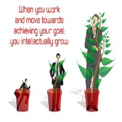 Business Development And Management