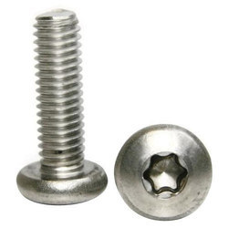 SS Torx Screw