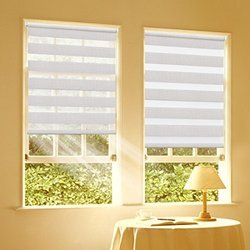 Translucent Zebra Roller Blinds