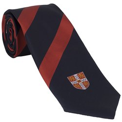 Corporate Red & Blue Tie