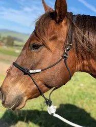 Hook Rope Horse Halters