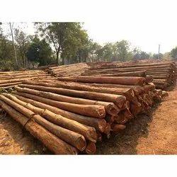 Sal Wood Pole