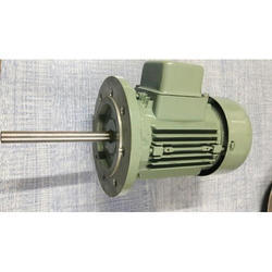 Vertical Type AC Induction Motor