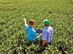 Agricultural Consultants, Type Of Industry Business: Agriculture