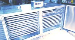Automatic Ss Stainless Steel Tray Dryer
