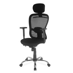 Nilkamal Alba Mid Back Chair
