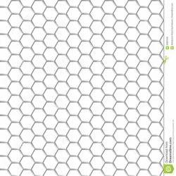 SS Hexagonal Net Mesh for Construction