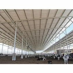 Dairy Roofing Shed