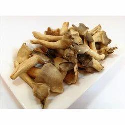 Vacuum Fried Oyster Mushroom Chips