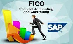 SAP FICO Practical Training