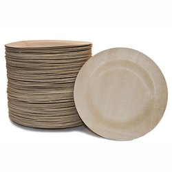 Disposable Biodegradable Plate