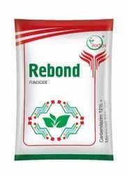 Rebond