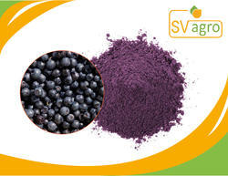 Billberry Fruit/Supply Bilberry Powder/Bilberry Extract