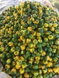 Sanika Traders Cubeb Fresh Yellow Capsicum, Packaging Size: 5 Kg