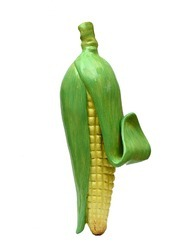 An Learning Model- Maize (corn)
