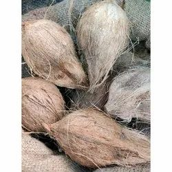 Semi Husked Pollachi Coconut, Packaging Size: 20 Kg