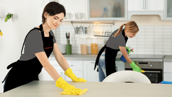 Domestic Help Services