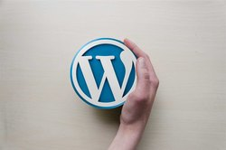 Wordpress Application Development Services