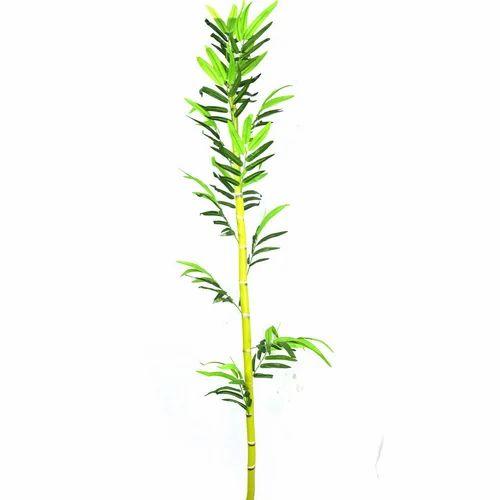 artificial bamboo plant, fake plant, kritim paudhe - twice flora