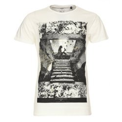 723b9ea93 Graphic T-Shirt at Rs 115 /piece(s) | Mens Graphic T-shirts | ID ...