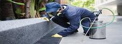 Residential, Commercial Pest Control Services, Pan India