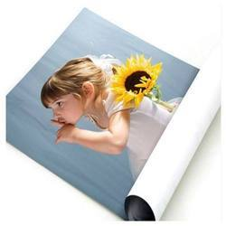 Digital & Offset Paper Poster Printing Service, in Pan India