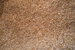 Nylon Room Carpet