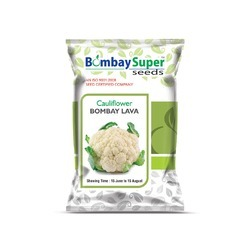 Bombay Lava Cauliflower Seeds