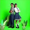 Cotton Viscose School Uniform Fabric