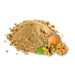 Chikoo Shake Powder
