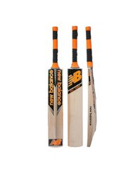 DC 1080 Cricket Bat